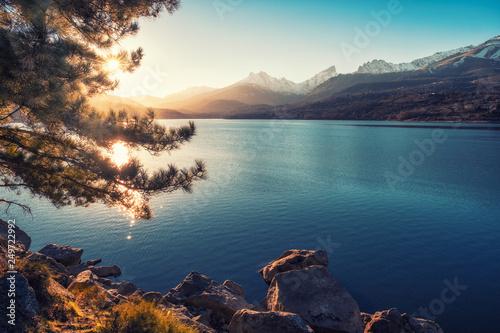 Valokuva  Sun filtering through pine tree above lake Calacuccia in Corsica