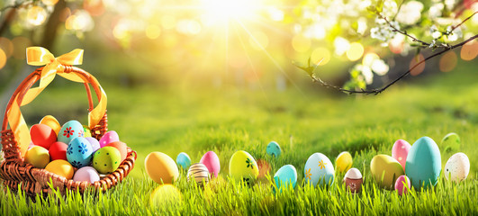 Easter Eggs in a Basket on Green Grass and Sunny Spring Background