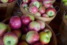 PA080029 Apples Bushel