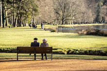 Elderly Couple Watching The Park