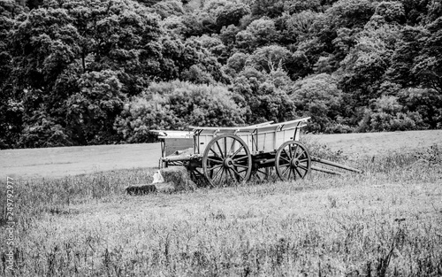Fototapety, obrazy: Old Carriage on a field