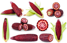 Purple Corn Isolated On White Clipping Path