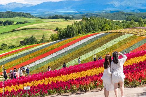 Valokuvatapetti 広大な花畑 / 北海道 美瑛町の観光イメージ
