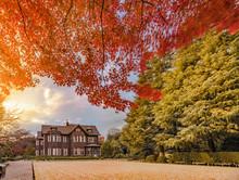 Sunset On Tokyo Metropolitan Park KyuFurukawa's Old Western-style Mansion At Red Maple Momiji Leaves Season In Autumn.