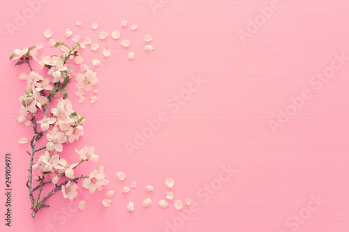 Foto photo of spring white cherry blossom tree on pastel pink wooden background