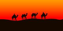 Camel Caravan Going In The Sah...