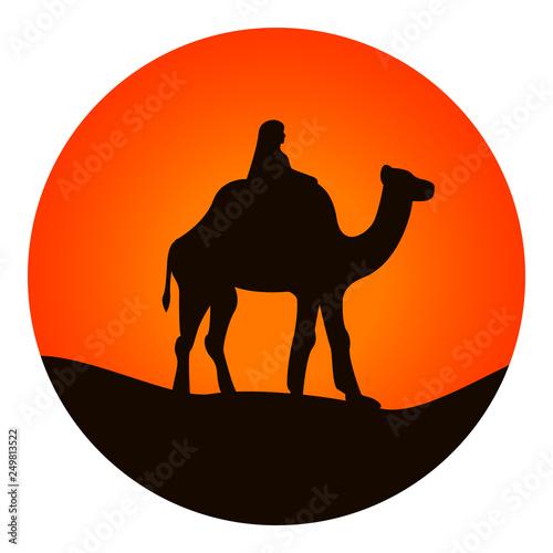 Fényképezés  Camel icon. Vector.