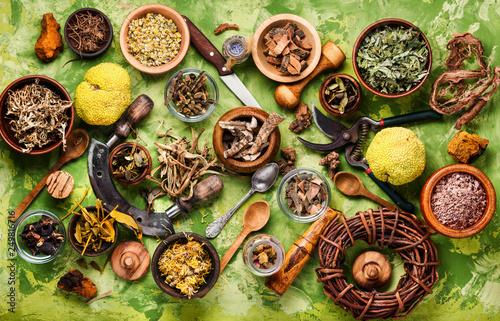 Assorted natural medical herbs Canvas Print