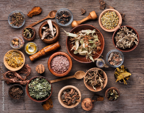 Assorted dried medical herbs Wallpaper Mural