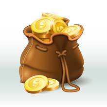 Golden Coins Bag. Gold Coin In...