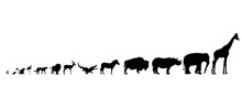 Illustration Of Set African Animals Icon. Vector Silhouette On White Background.