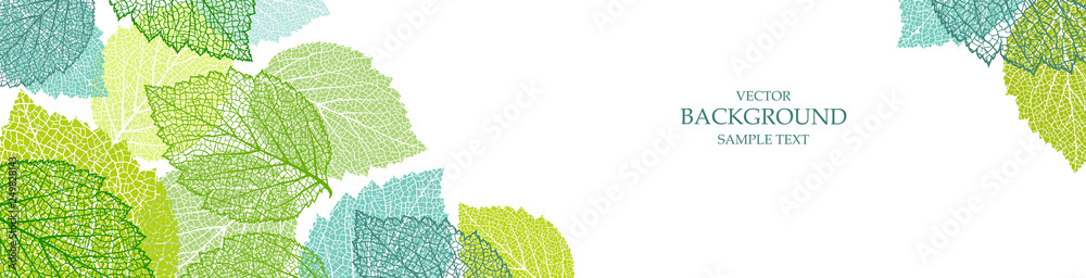 Fototapety, obrazy: Background with blue and green leaves. Nature banner. Frame with plants. Template