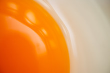 Close Up Yellowe Fresh Egg.