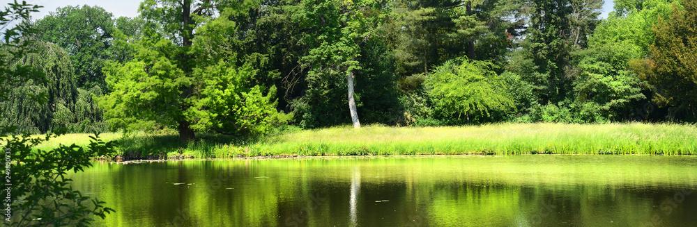 Fototapety, obrazy: Landschaft 688