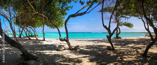 Panoramic view of the white sand and turquoise water of Baby Beach Aruba Canvas Print