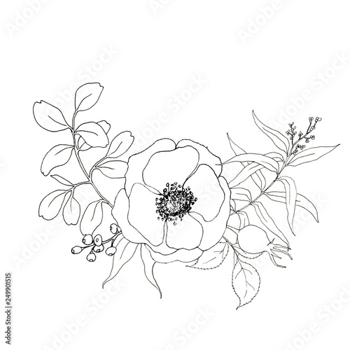 Sketch anemone and greenery bouquet Tapéta, Fotótapéta