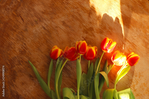 Foto auf AluDibond Tulpen Tulips on gray wooden background