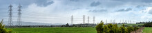 Panoramic View Of Powerlines Receding Into The Distance In Fields With Cattle