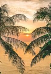 Fototapeta Morze Sunset through palm trees