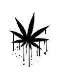 Fototapeta Młodzieżowe - blatt tropfen graffiti spray farbe klecks joint clipart logo hanf weed cannabis kiffen kiffer stoned rauchen drogen bekifft illegl design cool design