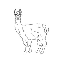 Llama In Cateye Glasses Outline Illustration