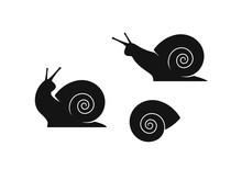 Grape Snail. Isolated Snails O...