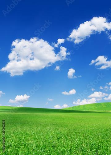 Foto op Plexiglas Weide, Moeras Idyllic view, green hills and blue sky with white clouds