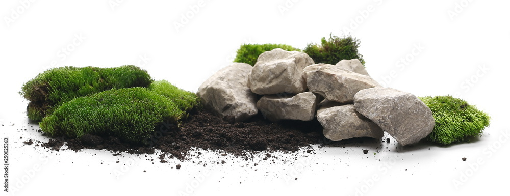Fototapeta Green moss with dirt, soil and decorative stone, rock isolated on white background