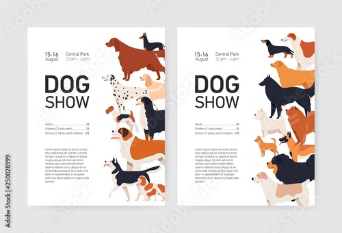 Foto  Bundle of flyer or placard templates for conformation dog show with adorable doggies of different breeds and place for text