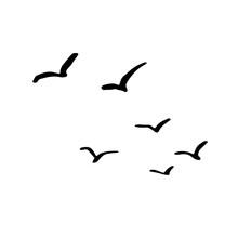 Flying Flock Of Birds. Hand Drawn Brush Vector Illustration.