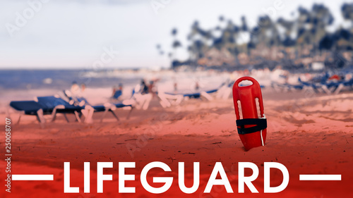 e07144a757a Baywatch Plakater & Posters - Billige plakater køb online ...