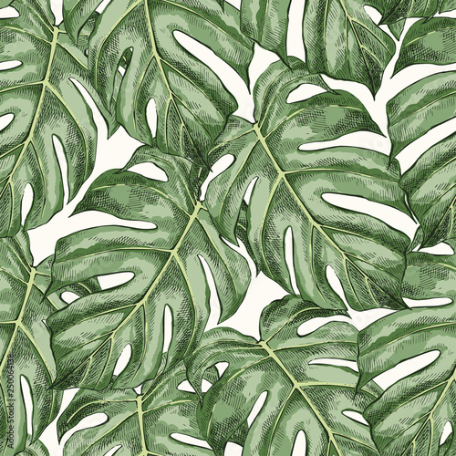 monstera-leaves-hand-drawn-seamless-color-pattern