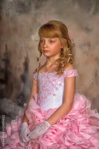 Fotografija  Portrait of adorable smiling little girl in princess dress