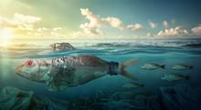 Fish Swims Among Plastic Ocean...