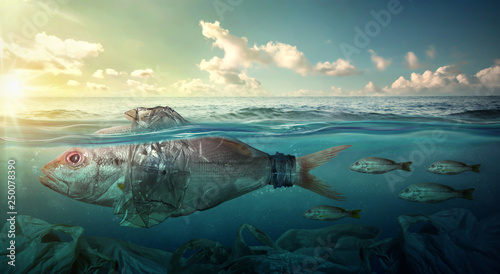 Photo  Fish swims among plastic ocean pollution. Environment concept
