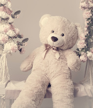 The Beautiful Teddy Bear