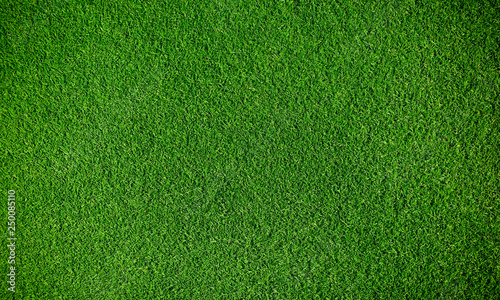Poster Gras Artificial grass background
