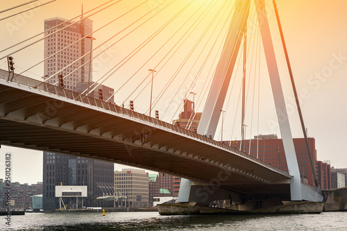 Fotografie, Obraz  ROTTERDAM, NETHERLANDS - APRIL 13, 2018: View on the Erasmus Bridge with cityscape, also called The Swan, on the Maas river in Rotterdam