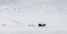 Snow Covered Landscape, Amish ...