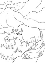 Coloring Pages. Beautiful Yak ...