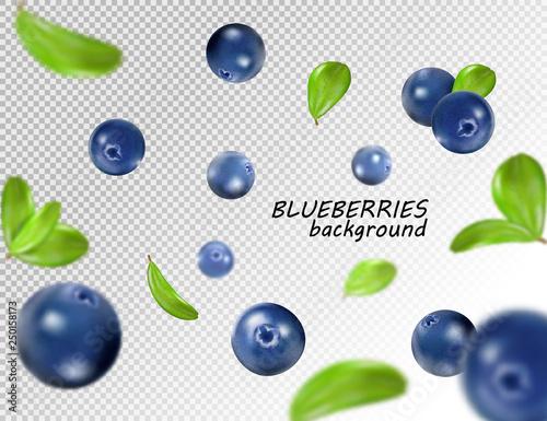Fototapeta Falling blueberry isolated on transparent background. Quality realistic vector, 3d illustration obraz