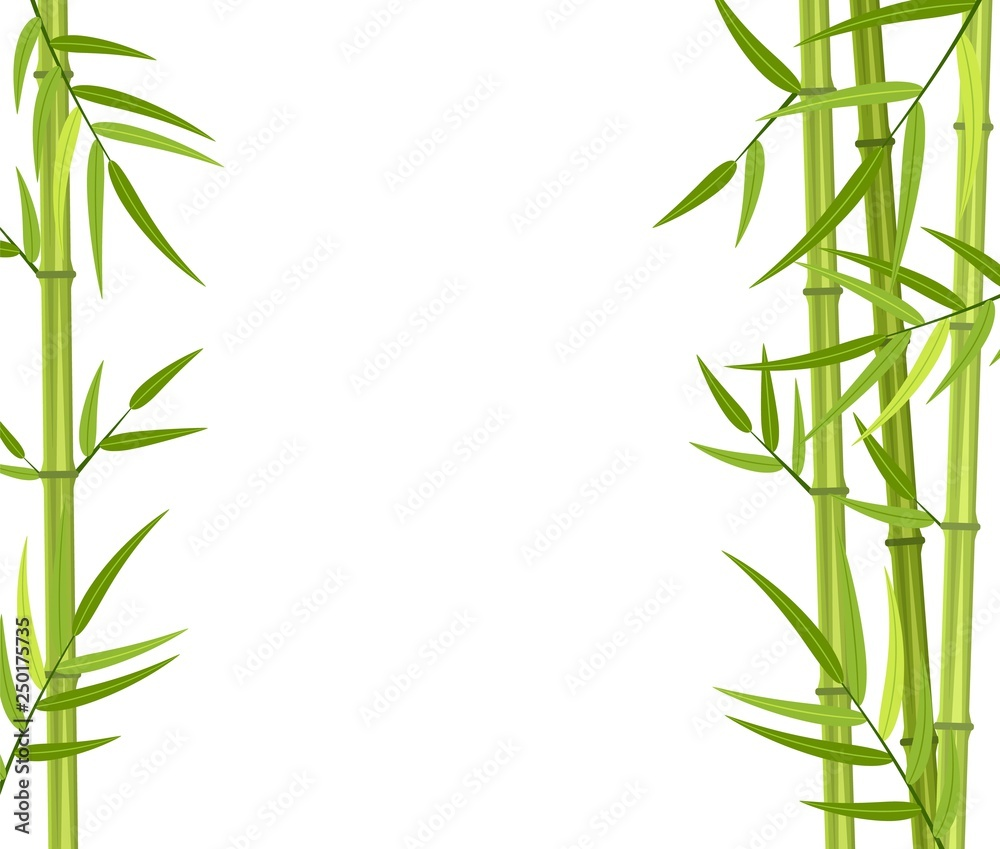 Vector green bamboo stems and leaves isolated on white background with copy space. Vector illustration in flat style