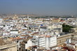 View of Seville from the height of the Cathedral