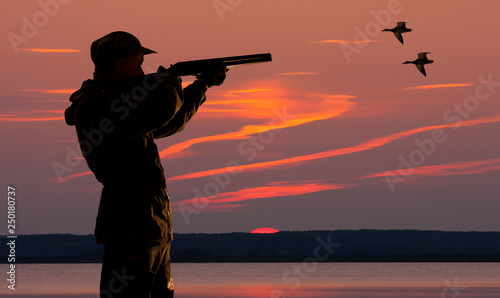 Poster Chasse duck hunter at sunset background