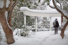 Colonnade In The Snow Park