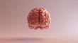 Pink Porcelain Anatomical Brain Front 3d illustration 3d render