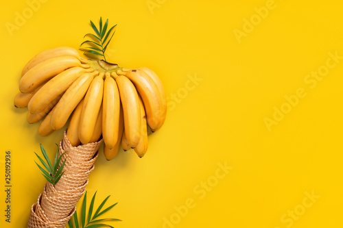 Fotografie, Obraz Banana palm of bananas and waffle cones