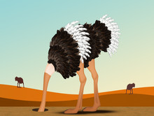 Illustration Of Ostrich With H...