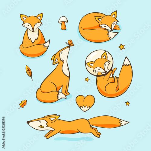Fototapeta Foxes set obraz
