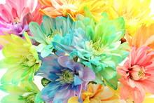 花 カラフル